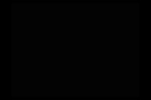Famous Names_FMN_Logo_300x200